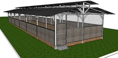 Konstruksi Kandang Untuk Pemeliharaan Ayam Kampung Jantan Super