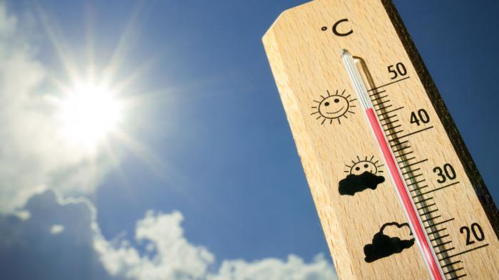Termometer sebagai  Pengatur Suhu Kandang