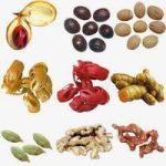 4 Keuntungan Menggunakan Ramuan Herbal Dibandingkan Menggunakan Obat-Obatan Kimia