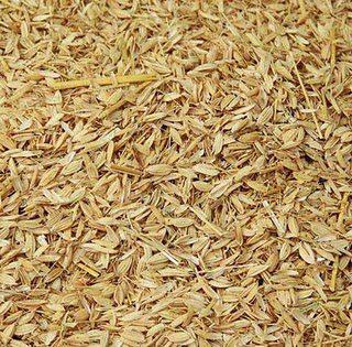 sekam padi untuk lantai kadang ayam kampung super