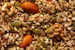 Pemberian biji-bijian dapat membantu pertumbuhan pada ayam serama