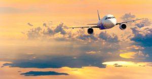Pengiriman DOD bebek via pesawat1