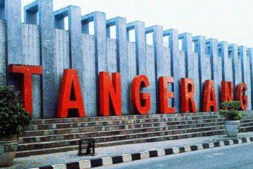 Harga Jual DOC atau Bibit Ayam Kampung Super untuk daerah Tangerang