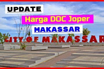 DOC Joper Makassar
