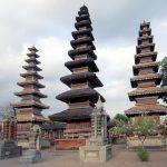 Harga Jual DOD atau Bibit Bebek Peking dan Hibrida Pedaging Untuk Daerah Mataram