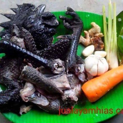 Cemani chicken meat