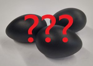 black chicken eggs