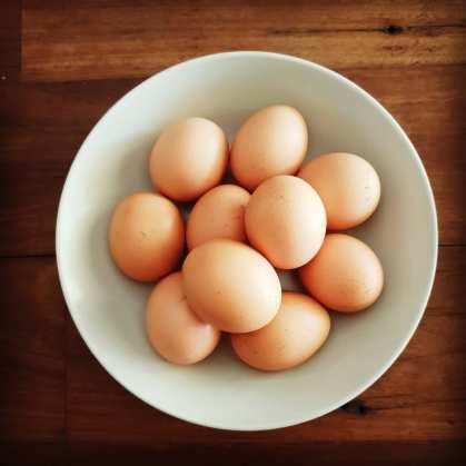 Telur Ayam Petelur