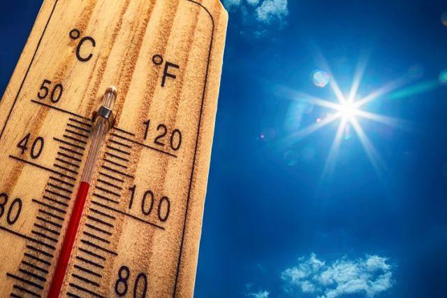 Suhu udara yang terlalu tinggi di dalam kandang akan membuat ayam menjadi stres dan terjadilah patuk mematuk antar ayam.