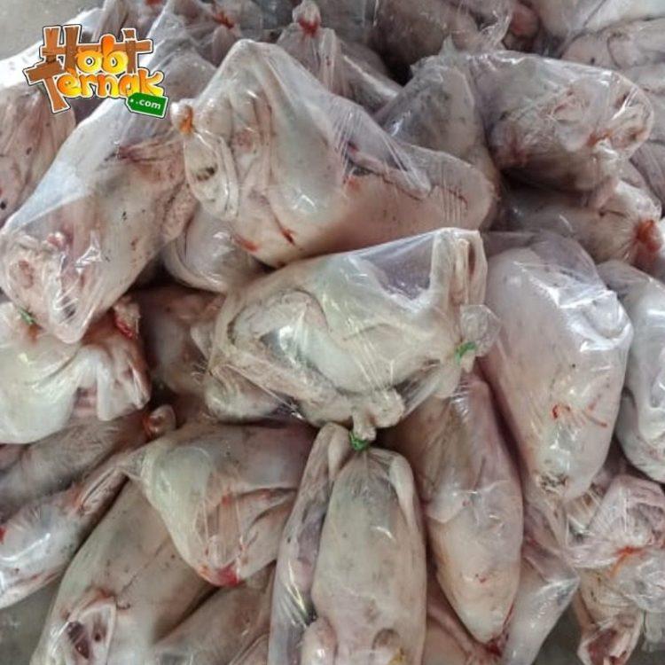 Daging bebek adalah salah satu daging yang banyak di minati oleh rakyat Indonesia.