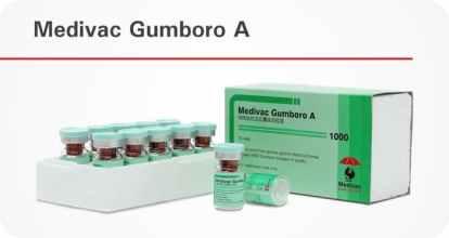 Medivac Gumboro A