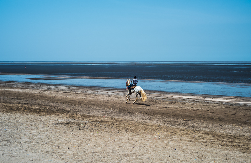 Boy riding a horse on diu beach in low tide