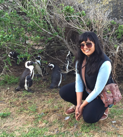 penguins at Simon's Town Cape Town