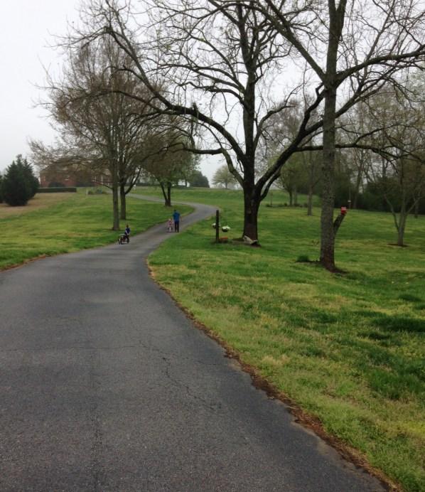 winding driveway