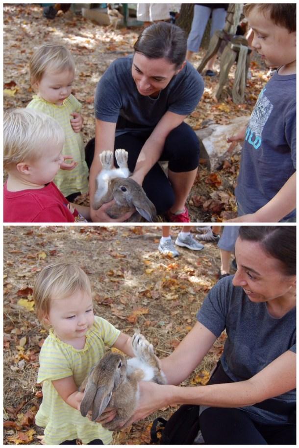 enota bunny