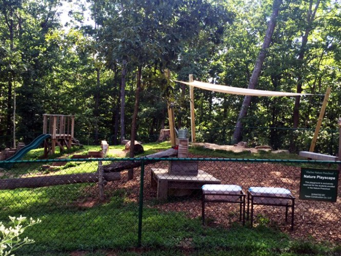Elachee playscape