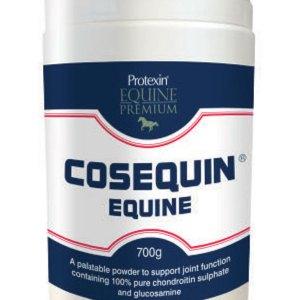 Protexin Cosequin liigeselisand hobustele