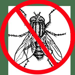 Putukatõrje
