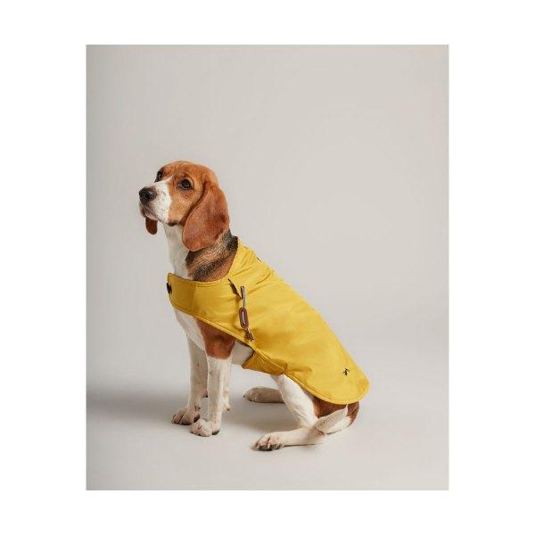 vihmajope koerale