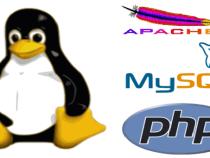Những khái niệm cơ bản khi học lập trình php cơ bản là gì?
