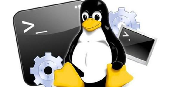 Những lệnh Linux cơ bản ai cũng cần biết – P1