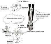 Chaga gali būti naudojamas esant hipertenzijai)