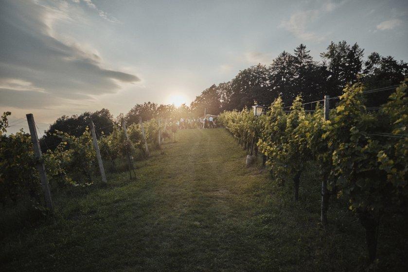 Weingartenhotel Harkamp  Hochzeitslocation Steiermark