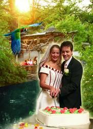 Zoo Hannover  JA Hochzeitsportal