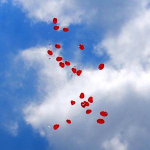 Preise Fotoposter: Hochzeitsreportage: fliegende Luftballons am blauen Himmel