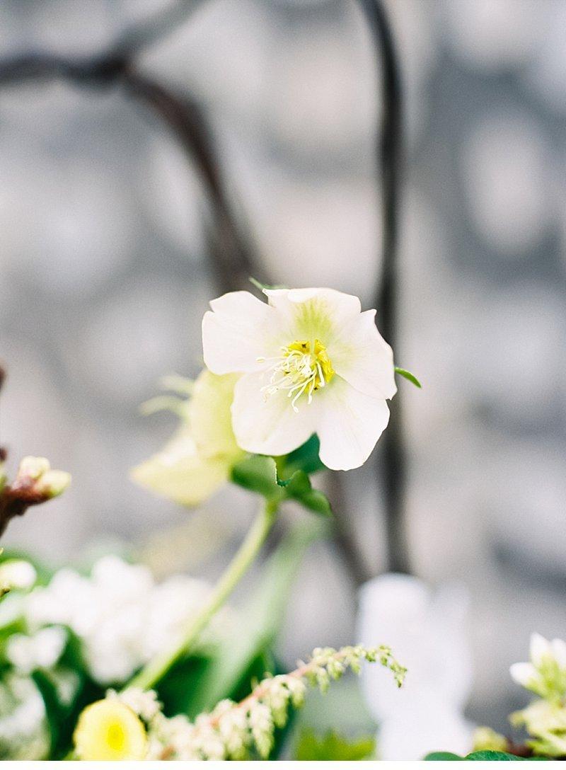 romantic natural wedding inspiration 0005
