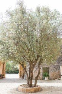Hochzeitsplanerin heiratet Hochzeit Mallorca Fincahotel1