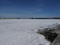 Rivière gelée ou étendue d'herbe recouverte de neige? Frozen river or grass covered by snow?