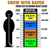 Raven Sticks - Hockeytown 19083