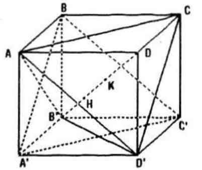 Bài Tập 5 Trang 119 SGK Hình Học Lớp 11