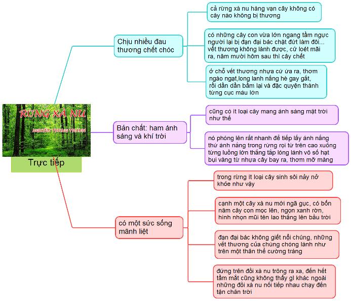 sơ đồ tư duy rừng xà nu