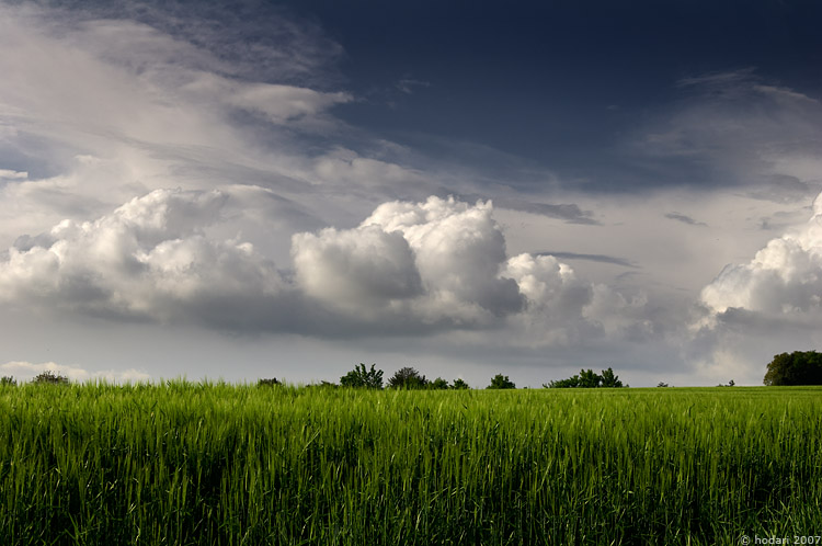 Resultado de imagen para nubes en el campo