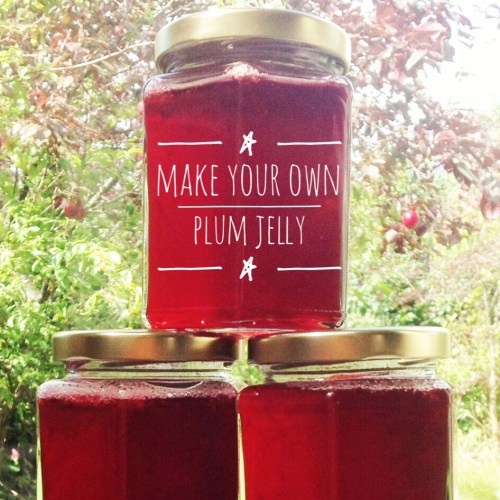 Recipe: Plum Jelly - preserving summer