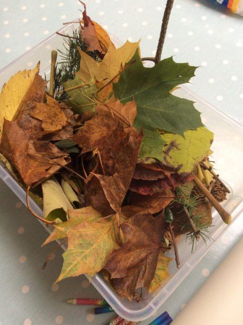 Autumn Leaf Crafts