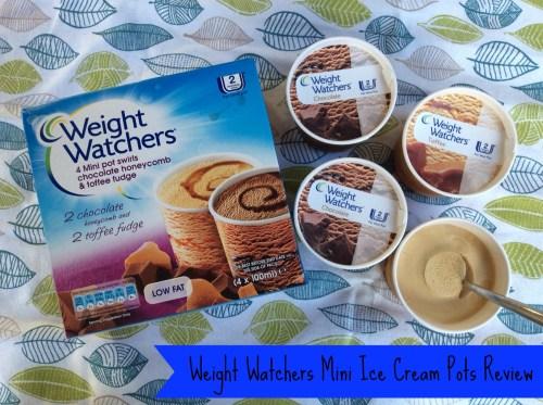 Weight Watchers Mini Ice Cream Pots
