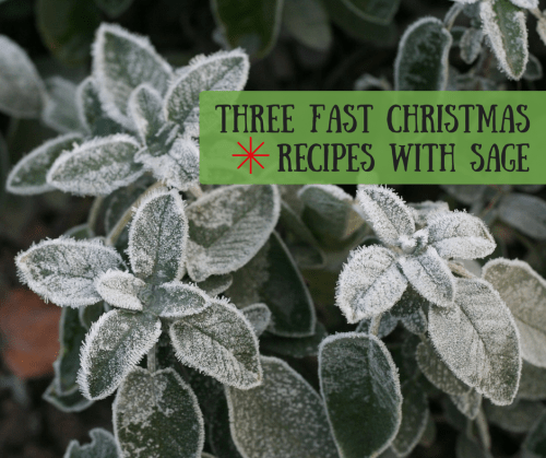 Three fast Christmas recipes with Sage