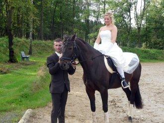 olpe-drolshagen-hochzeit-P1010692 Alles Gute, Jasmin und Mike RG-Hof-Höherhaus  Mike Böhme Jasmin Böhme Hochzeit
