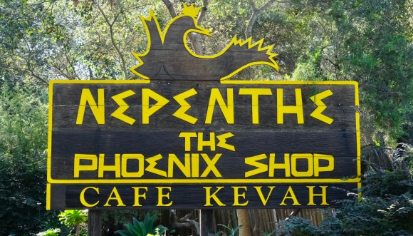 Nepenthe is an expensive restaurant near Pfeiffer Big Sur State park.  Killer views of the coastline.