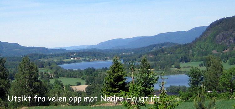 Utsikt fra veien opp mot Nedre  Haugtuft