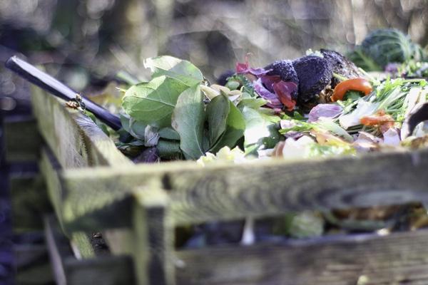 El mejor compostador doméstico ¿Cual comprar?