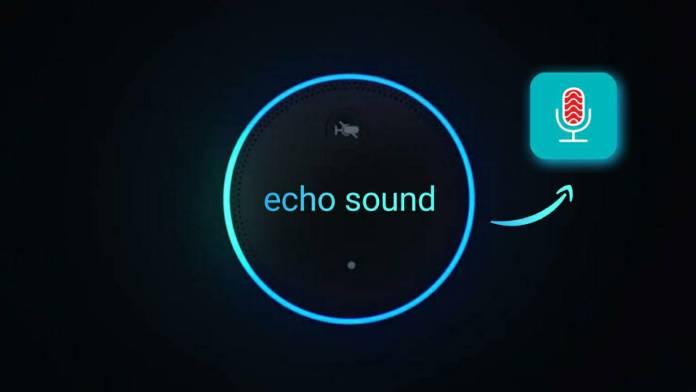Echo effect app