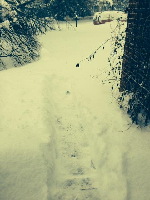 Snow20140213100Z