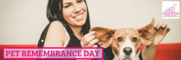 Pet Remembrance Day