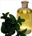 Peppermint oil help relieve holiday stress!