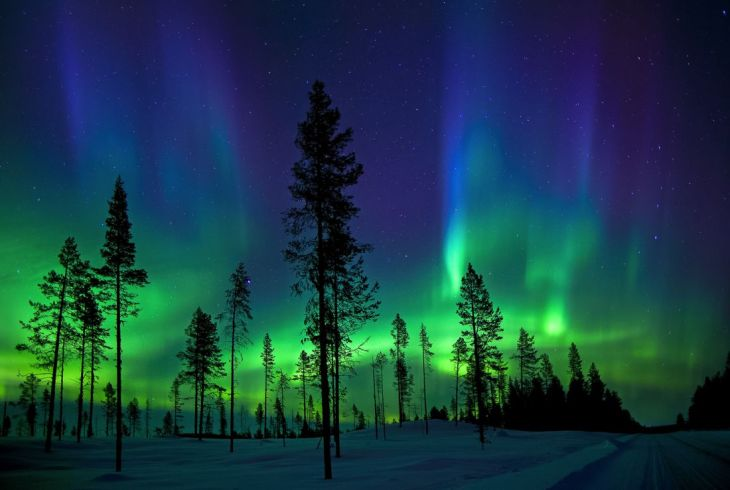 kutup aurorası kuzey ışıkları