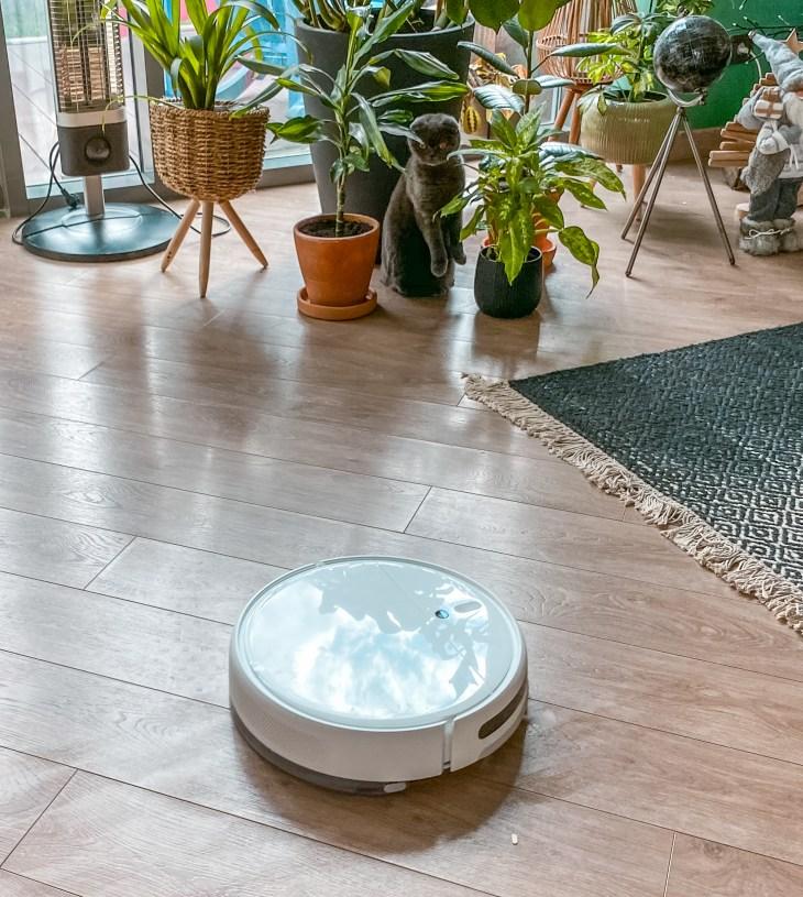 akıllı robot süpürge ve evcil hayvanlar